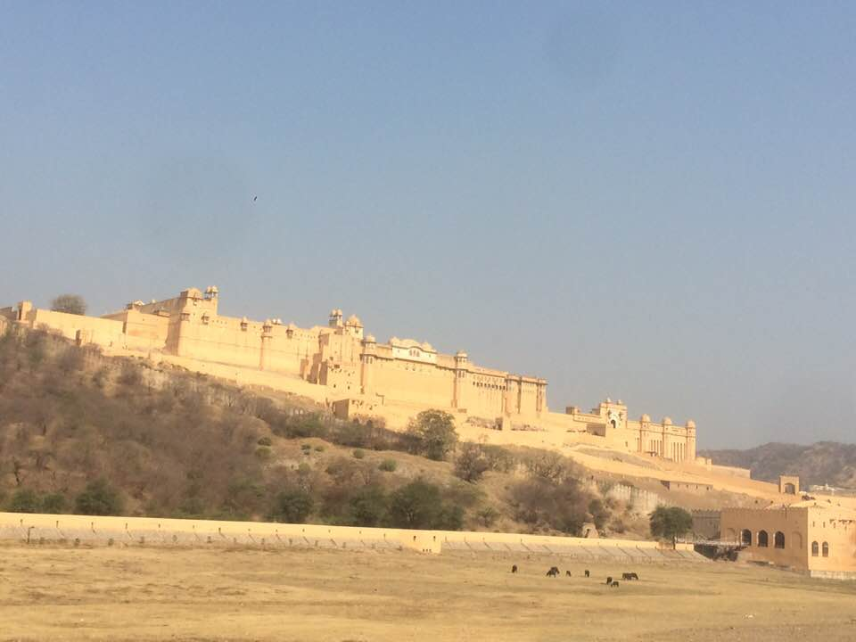Sampoorna Yoga Blog - Golden Triangle India15
